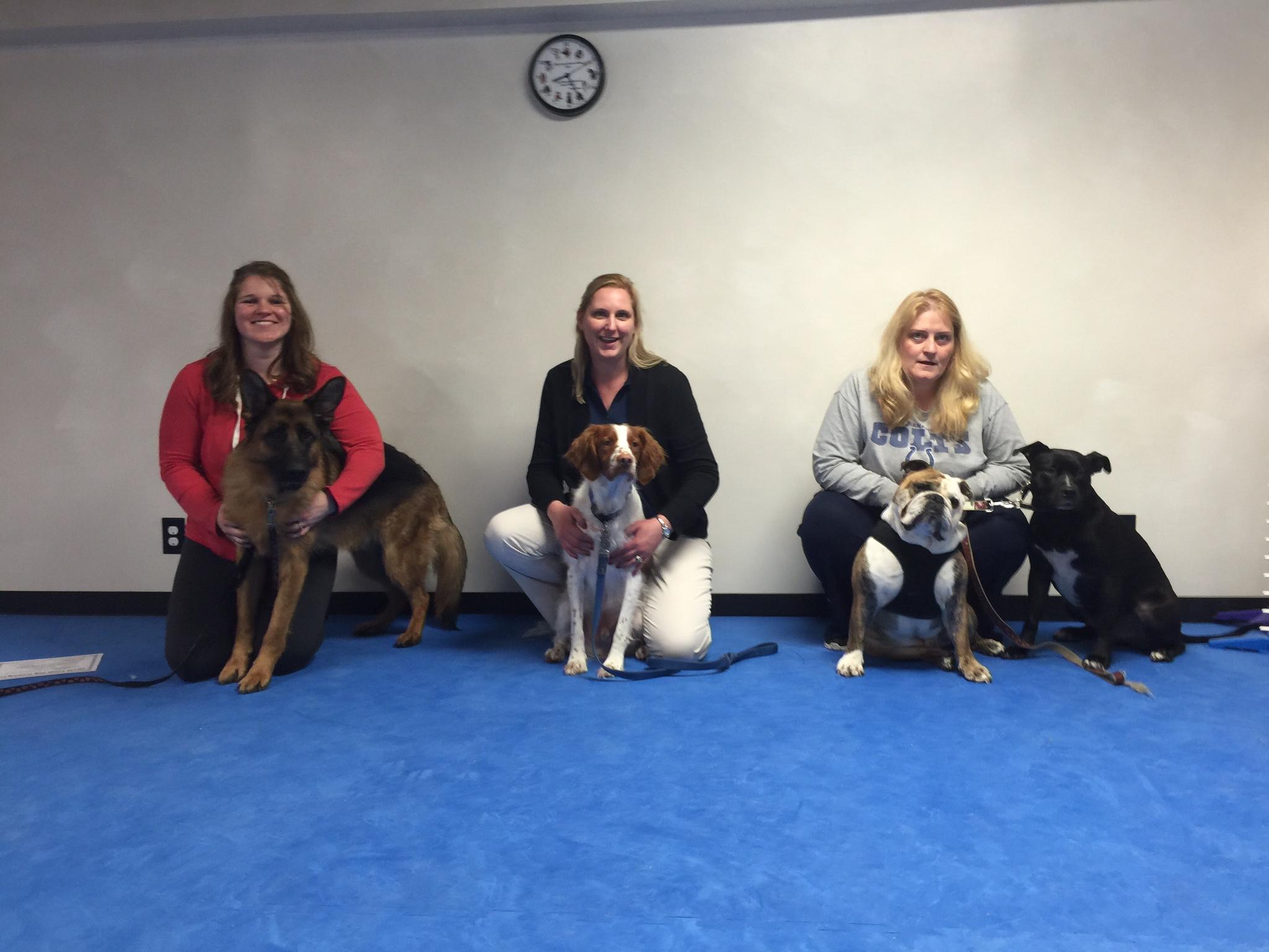 Dog Training Classes Northwest Indiana