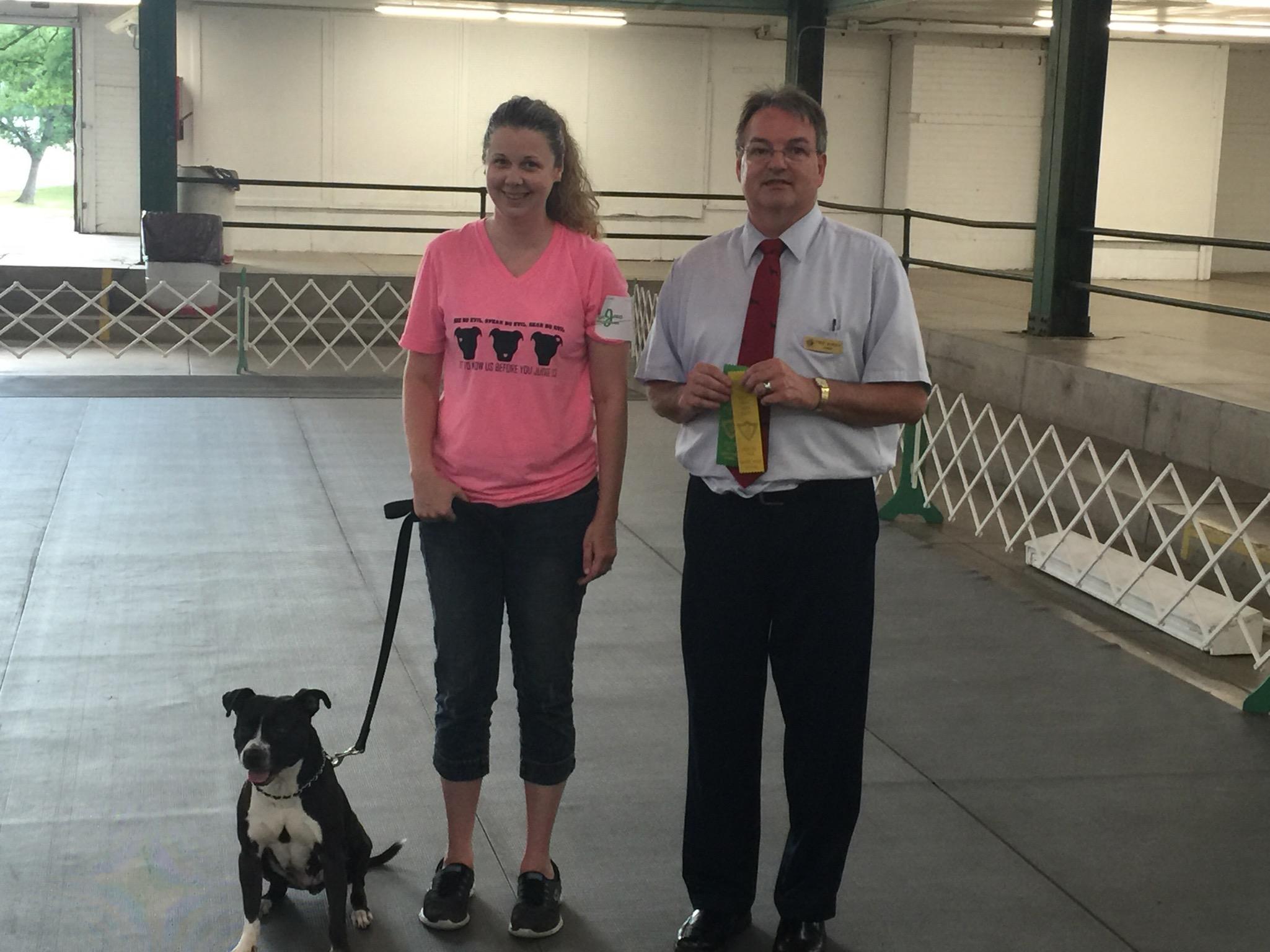 Dog Agility Training Northwest Indiana